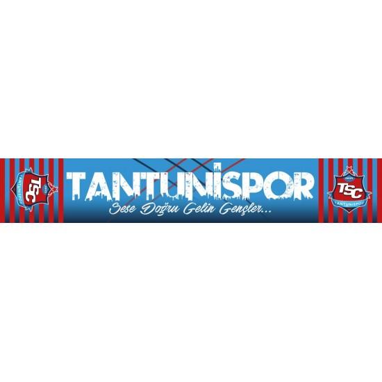 TANTUNİSPOR PES-2018 ATKI