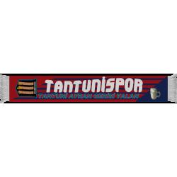 TANTUNİSPOR PES-2017 ATKI